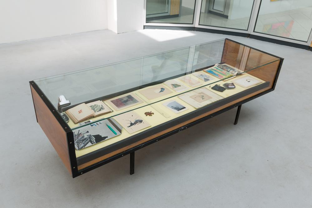 """Mateusz Kula, series """"War chronicles"""", 2015, koláž na papíře a tisk na archivní papír a kovové destičky, vitrína z historického muzea,růžná velikost"""