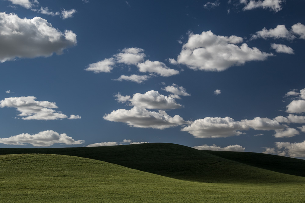 Tim_Grey-02.jpg