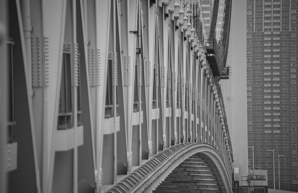 Harold Davis -Rainbow Bridge Tokyo.jpg