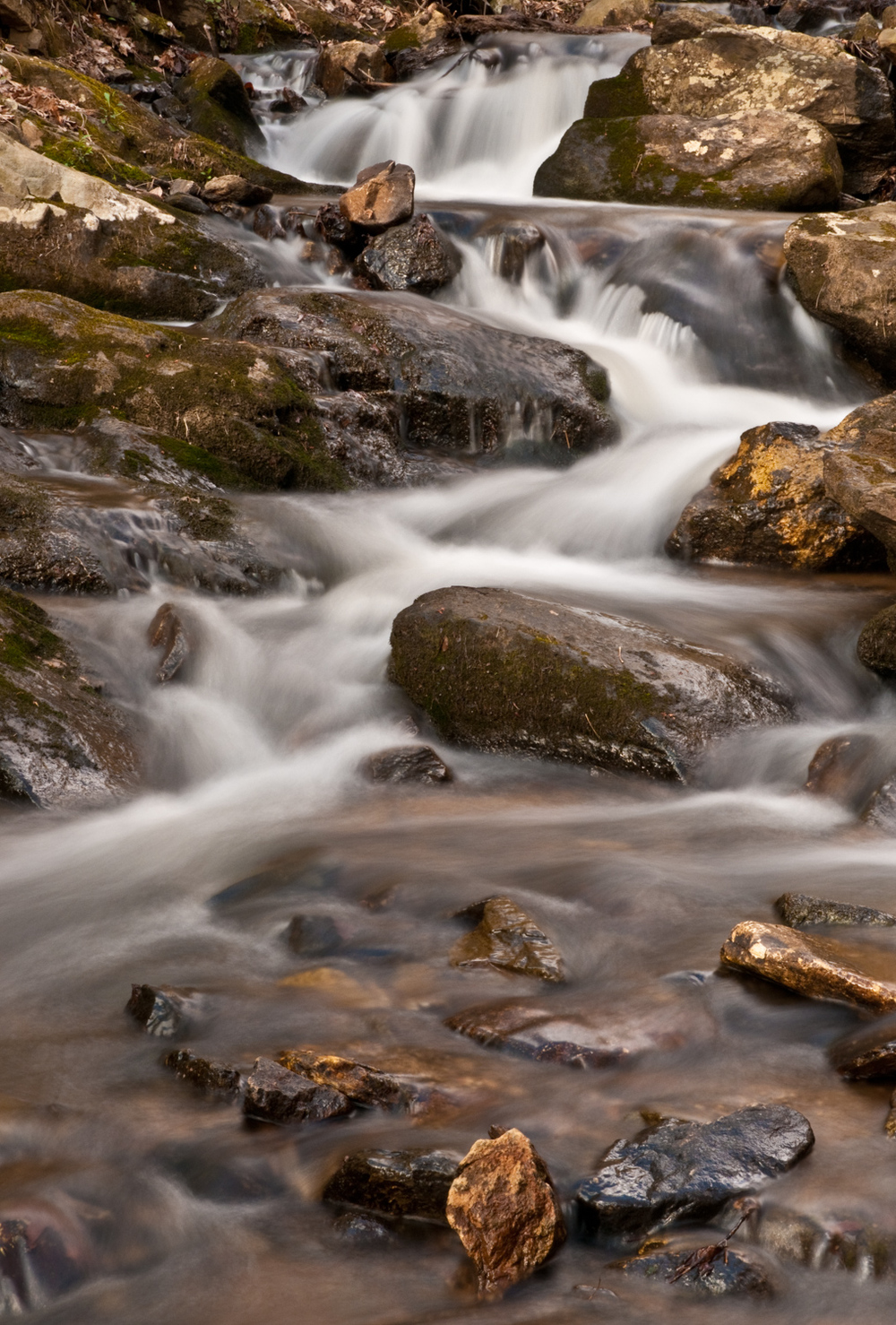 Amicalola Streamscape.jpg