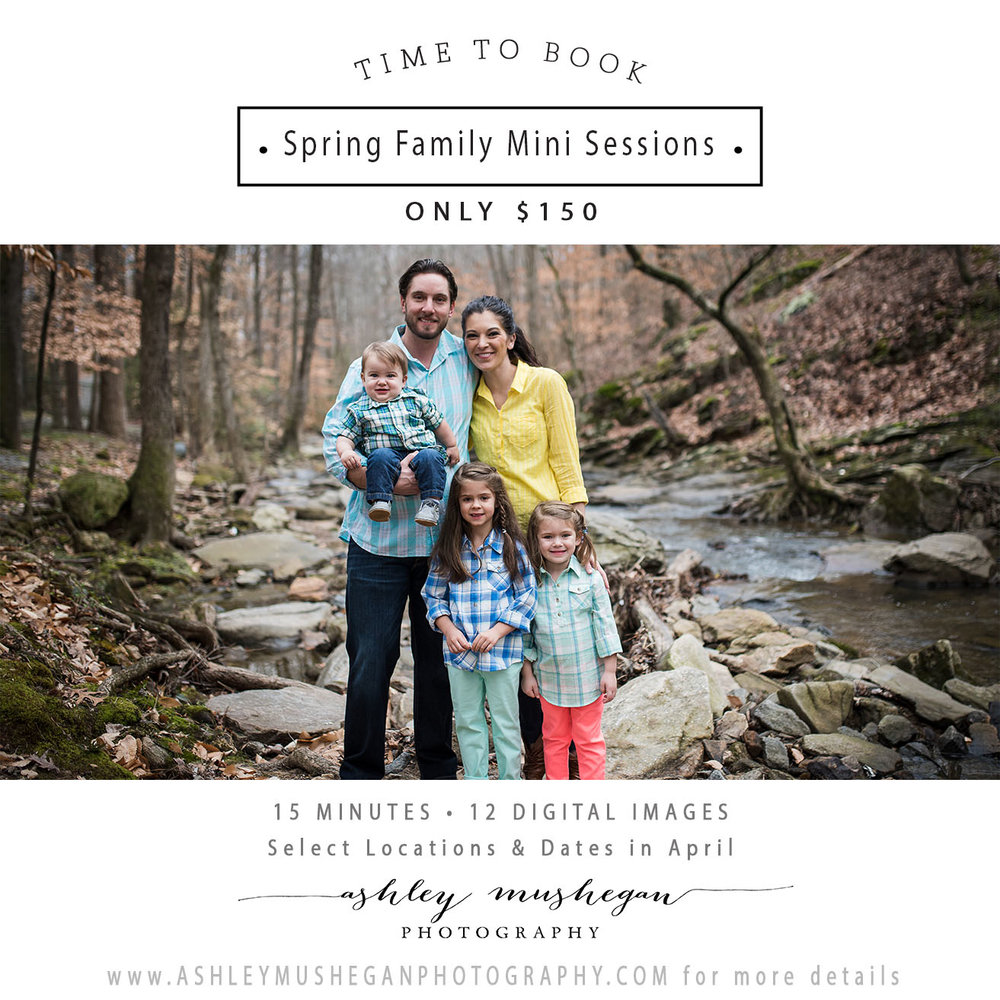 Spring  Family Mini Session April 2018.jpg