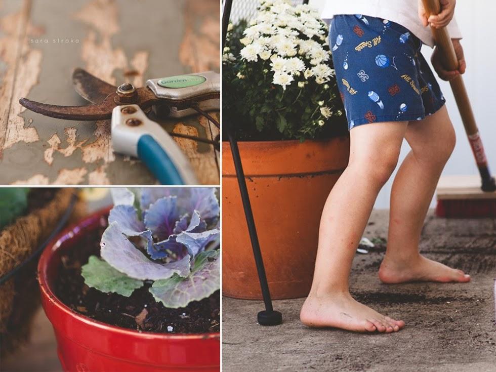 Fall+Garden+Storyboard+iv.jpg