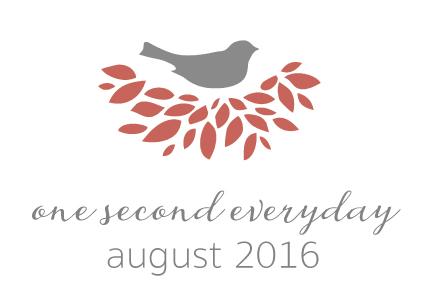 1se_2016_August.jpg