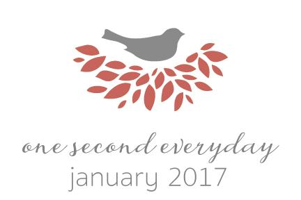 1se_2017_January.jpg