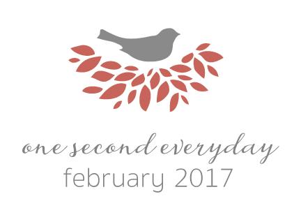 1se_2017_February.jpg