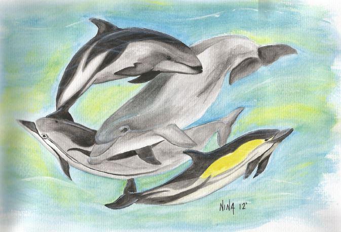 DolphinsMasters.JPG