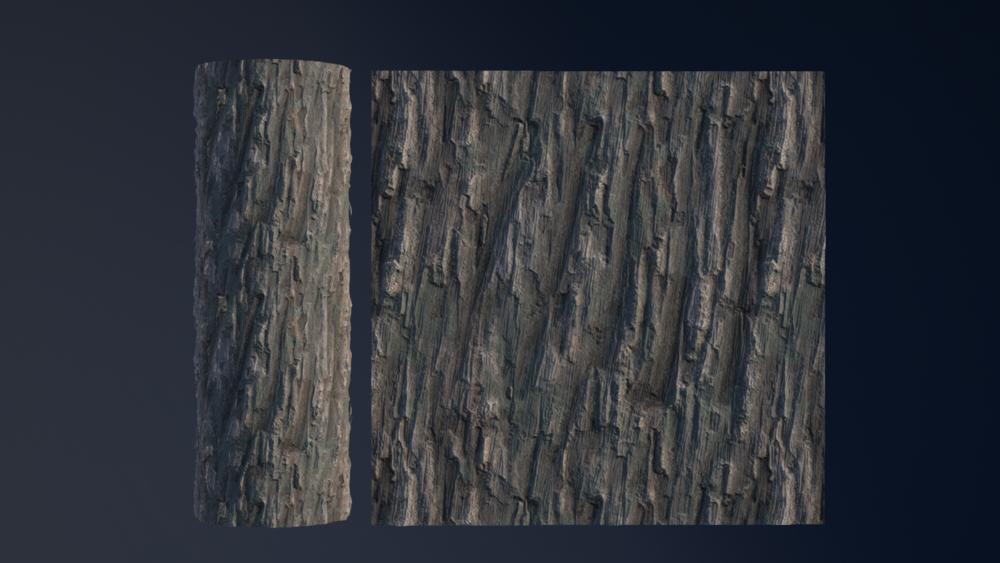 12-07-15-treeBark