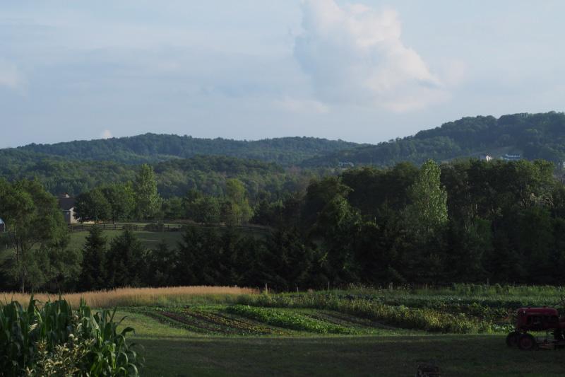 lomafarm1.jpg