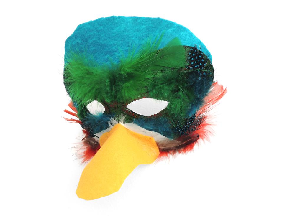 mask-duck.jpg