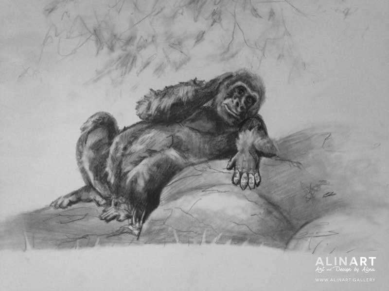 Gorilla Study 1 , 2016, Pencil on paper
