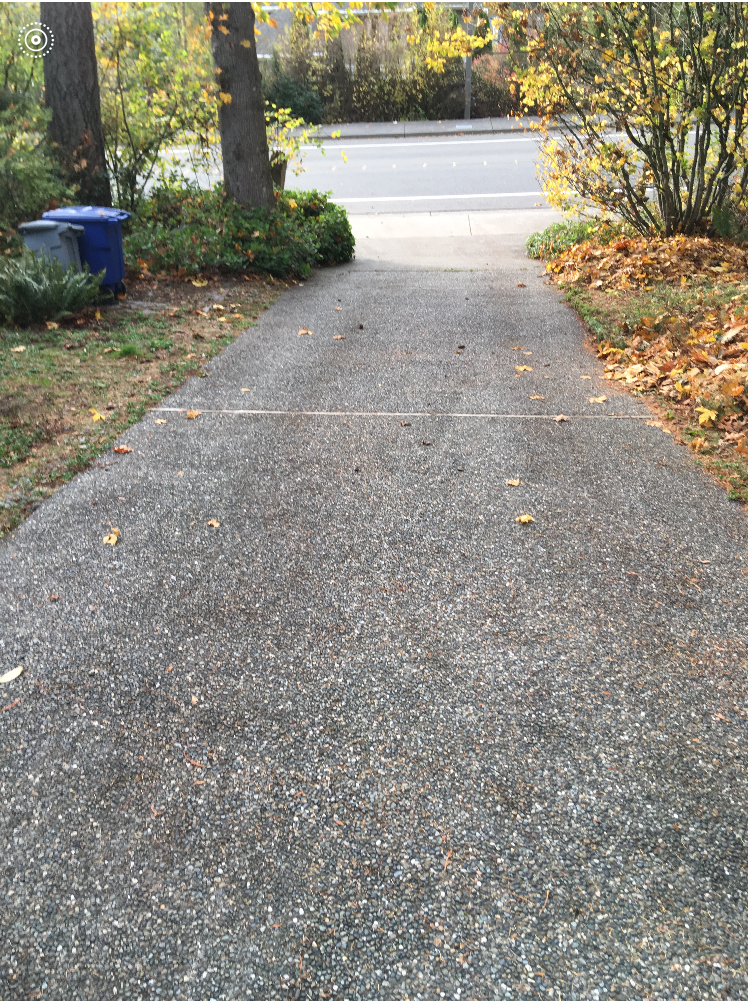 driveway after1.PNG