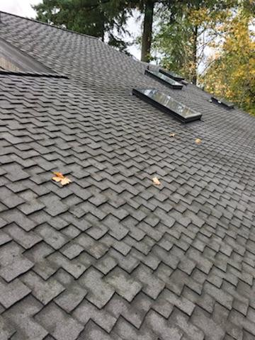 Roof after 3.JPG