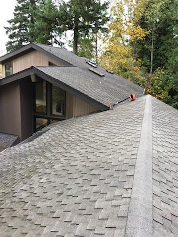 Roof after 4.JPG