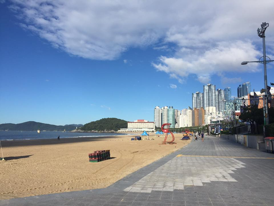 The beaches of Busan