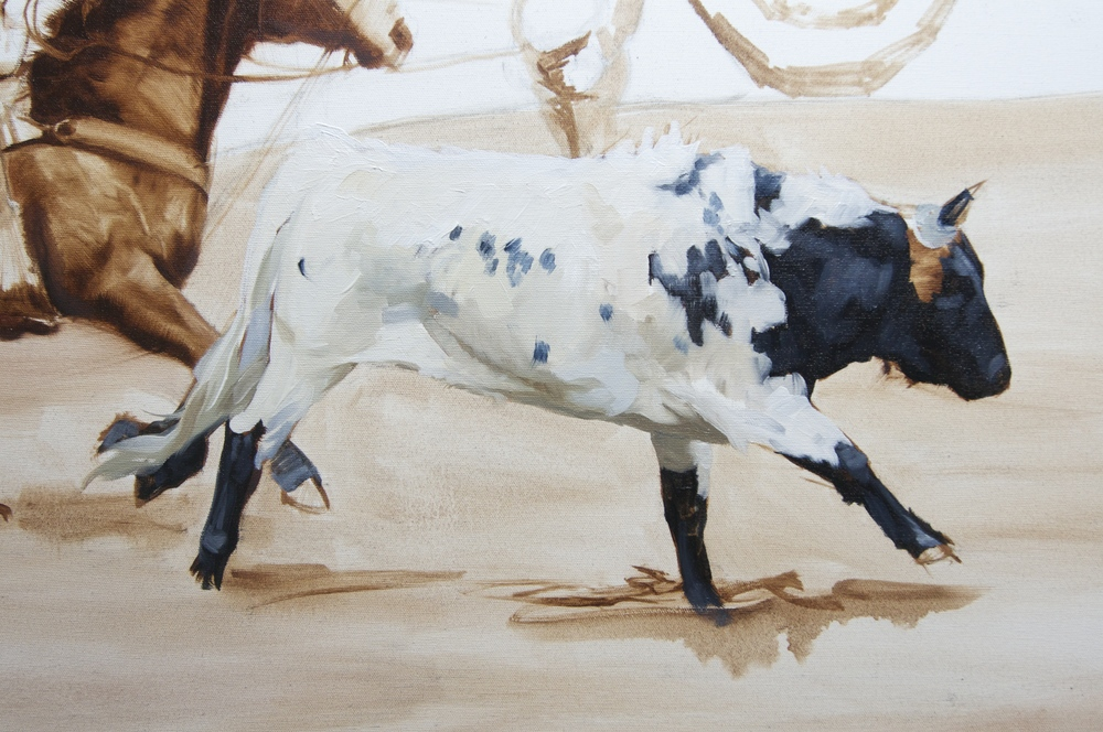 Close-up of steer.`