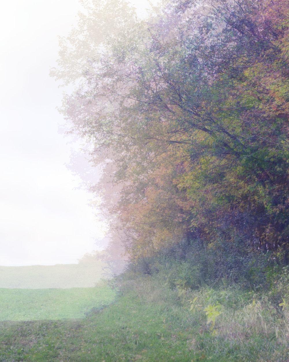 landscape 4-t.jpg