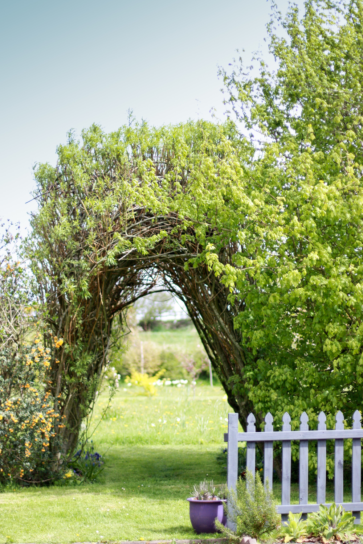 Kilcoan Gardens-7.jpg