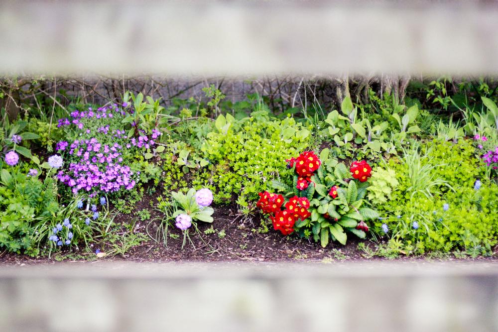 Kilcoan Gardens-26.jpg