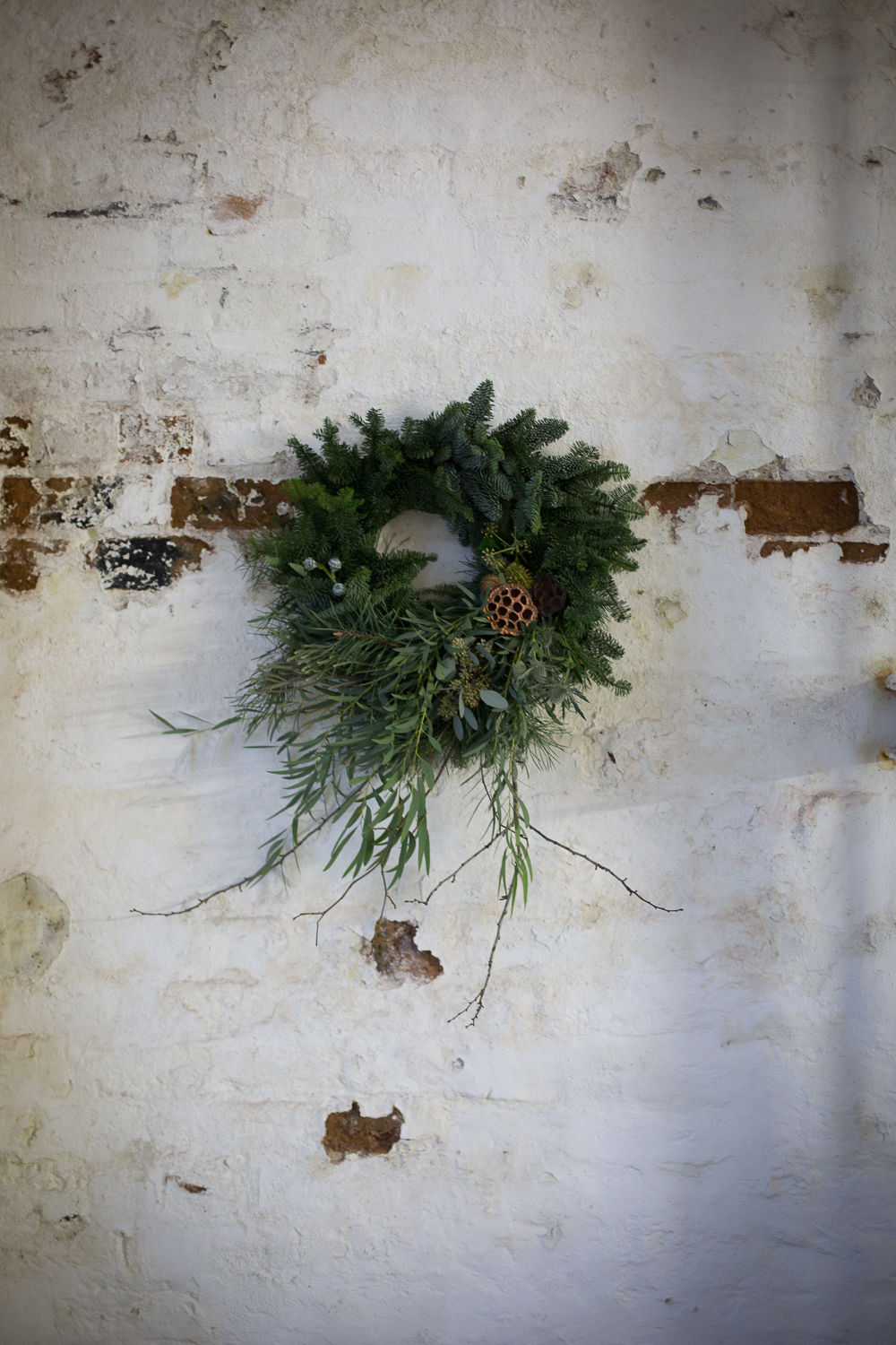 Wreath foraging-22.jpg