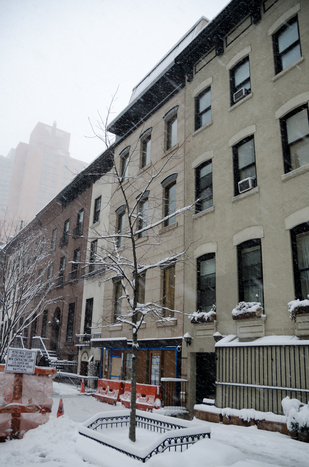 2017-02-09 - Snow Storm-9.jpg