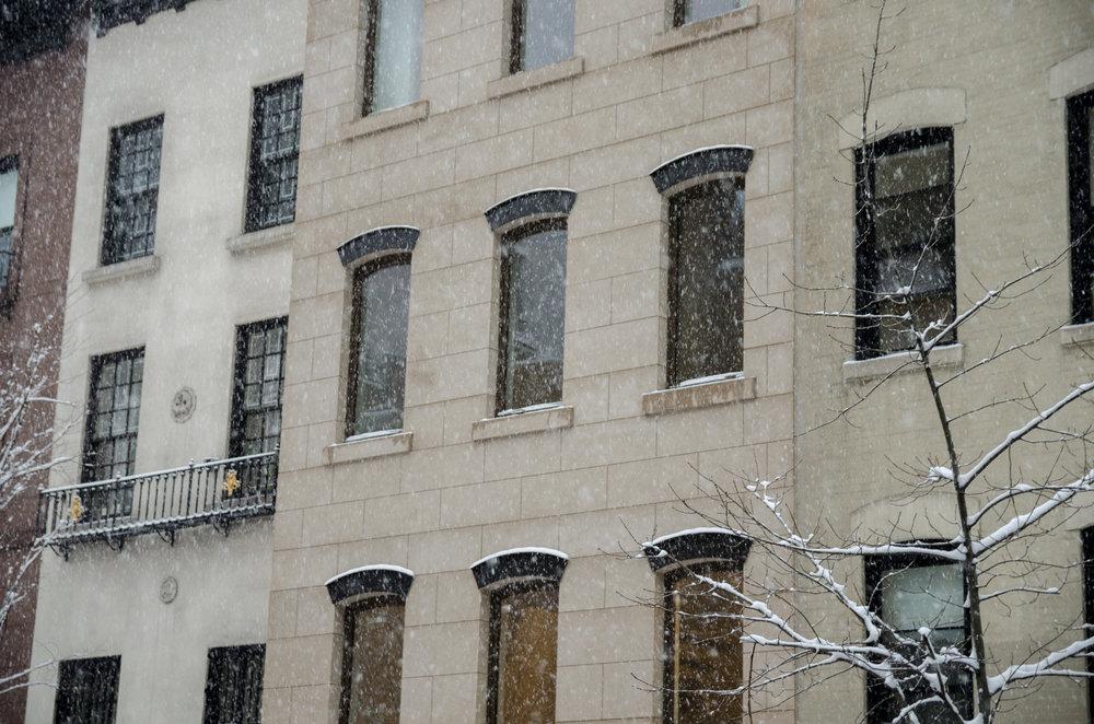 2017-02-09 - Snow Storm-7.jpg