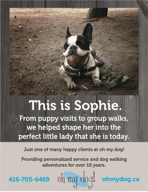 OMD-Sophie