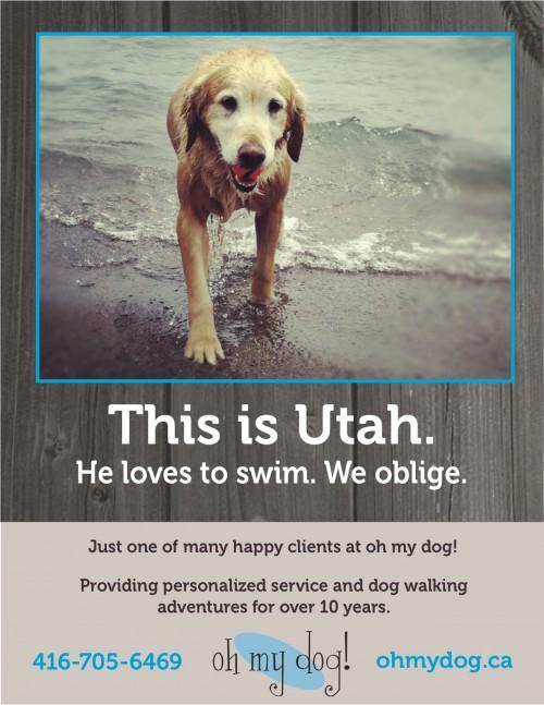 OMD-Utah