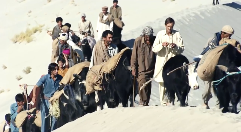 INAUGURAL SDG FILM - UN