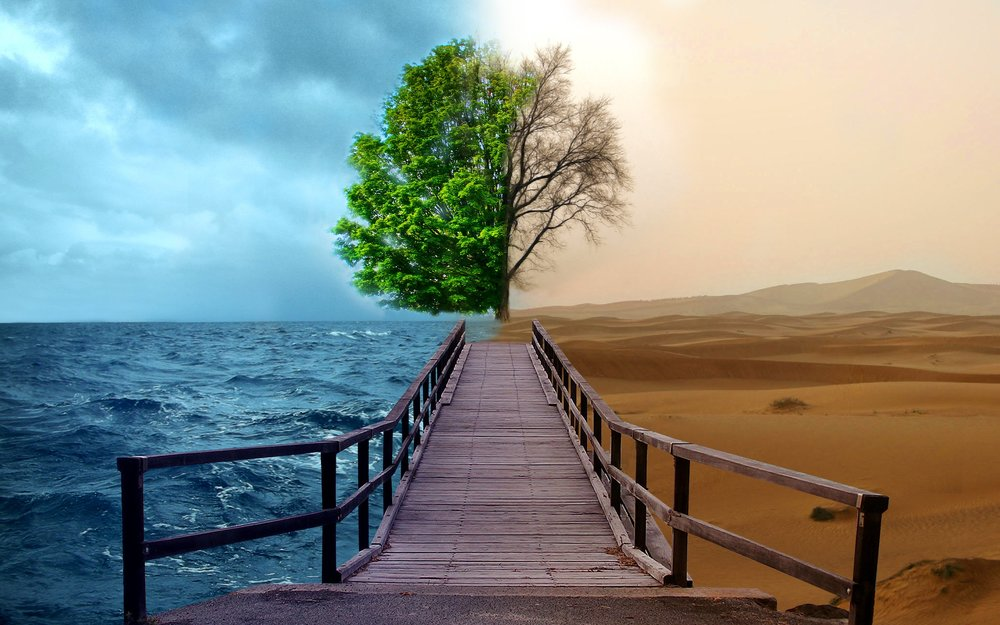 climate change & environment -