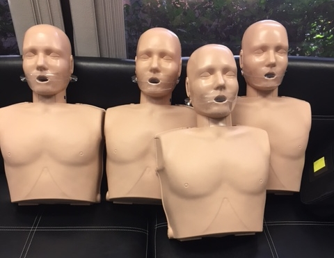 CPr manikins at the ready!!