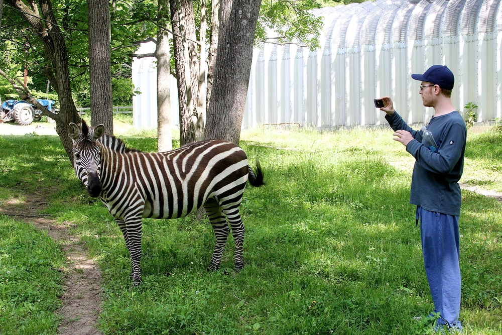 We met a Zebra!