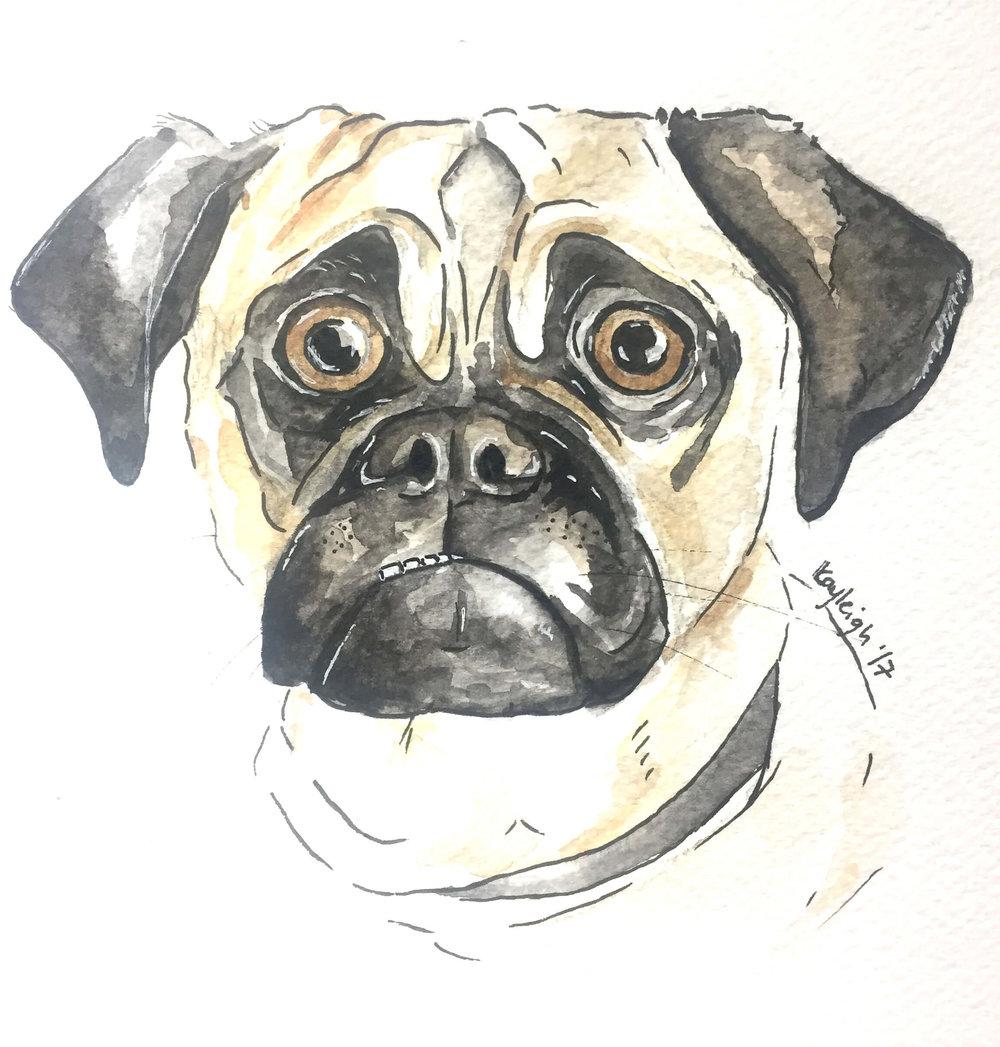 kayleigh_mccallum_paint_my_dug_dog_portrait_frenchbulldog_pug.jpg