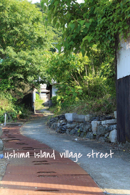 ushima-village-view.jpg