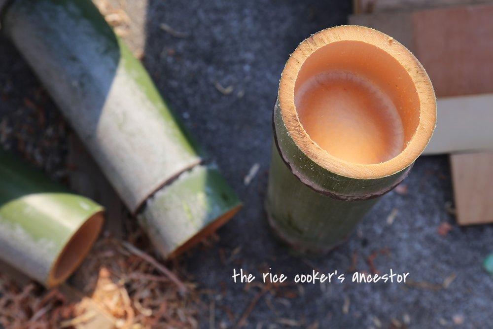 ushima-bamboo.jpg