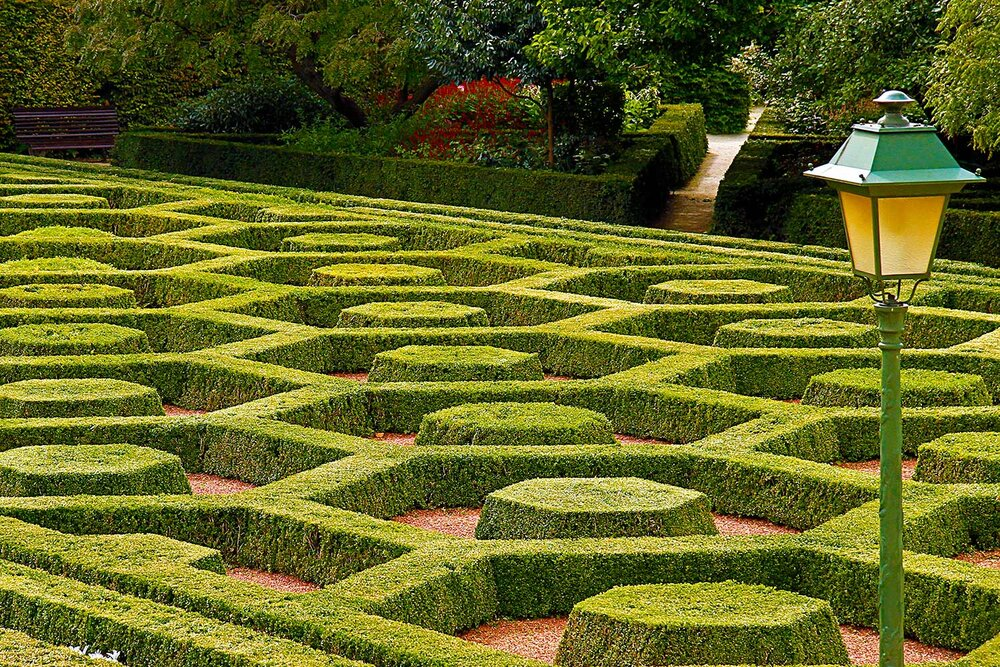 Belgian Botanicals