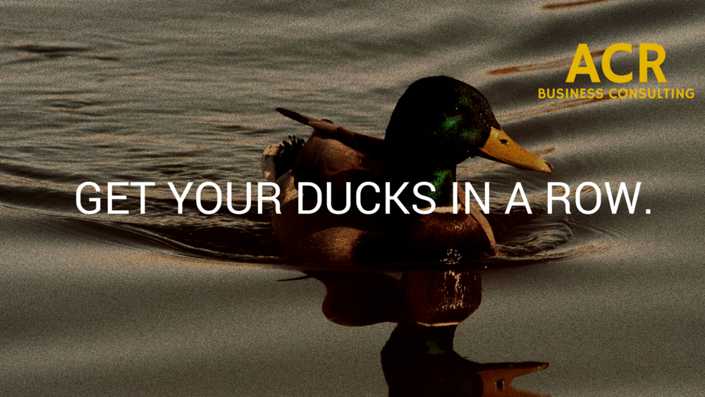 ACR Web Banners - ducks low logo.png