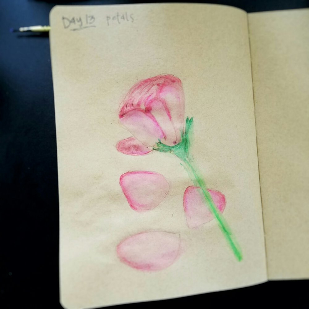 Day 13: petals