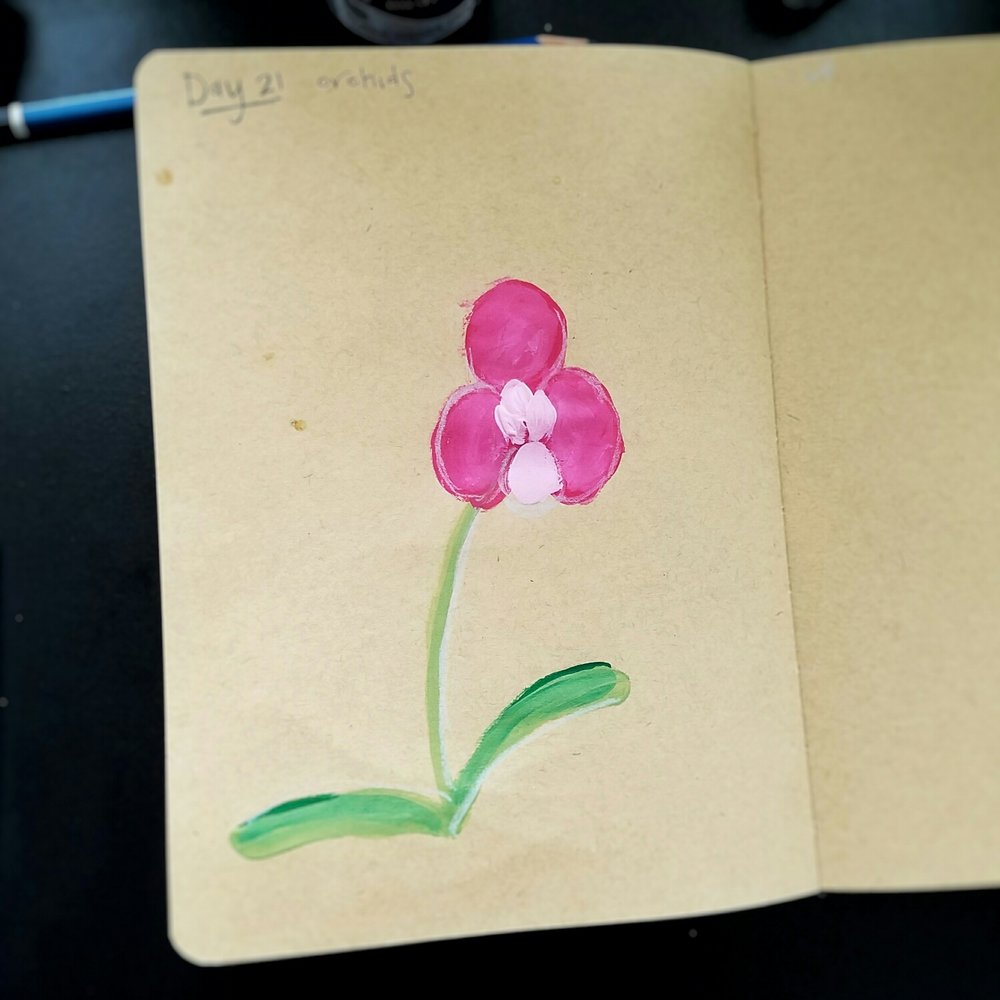 Day 21: Orchids