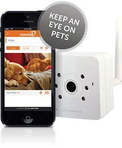 Pet-Camera-Picture.jpg