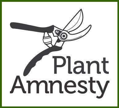 plant-amnesty.jpg