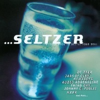 "Seltzer: Modern Rock To Settle Your Soul (1996) Track: ""Teenage Politics"""