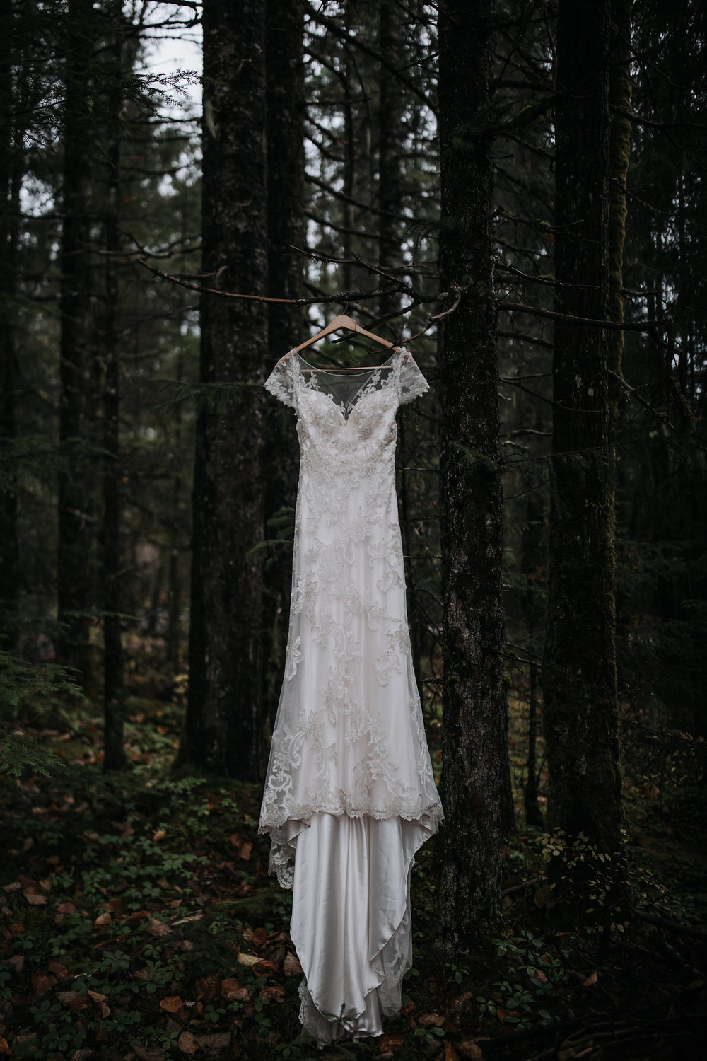 juneau_wedding_dress.jpg
