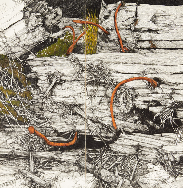 Paul Guest Drawing Prize (2014) - Finalist