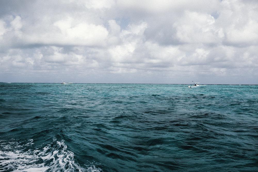 Cayman-6.jpg