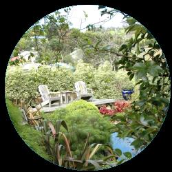 garden 7.png