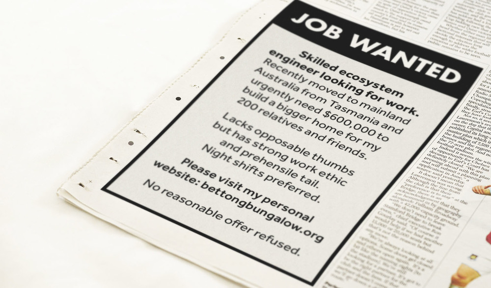 A job wanted ad was put into newspapers around Australia directing people to the website.