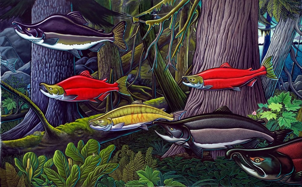Return of the Wild Salmon with Mark Titus - Creator of the transformational film The Breach -  Living Dialogues with Duncan Campbell - KGNU 88.5, Boulder, CO (art by  Ray Troll )