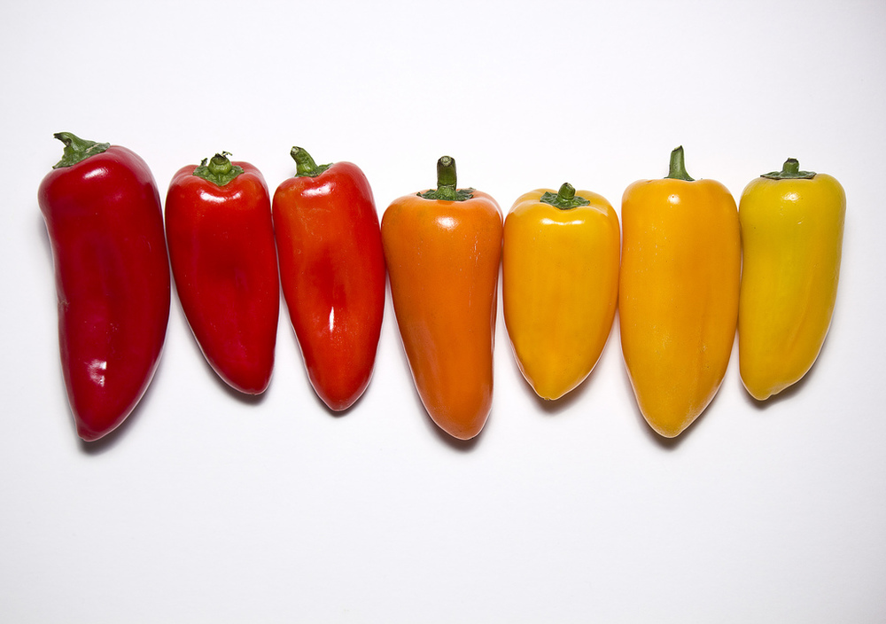 Pick a Pepper - my first image to ever be sold!  I didn't see a penny of the sale, it's still in Getty's accounts, but technically it's an earner!  :)