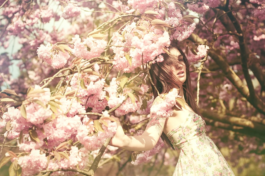 This is a wonderful advert for a cherry blossom tree that also features a girl.    Sachie Nagasawa - 500px