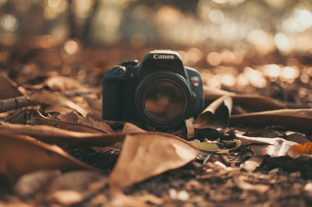 camera-canon-depth-of-field-597419.jpg